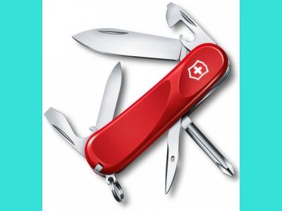 Нож Victorinox Evolution 2.4803E