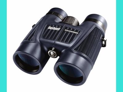 Бинокль Bushnell 8*40 черный